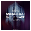 Dop'q: Snorkeling in the space (DP-6 remix)